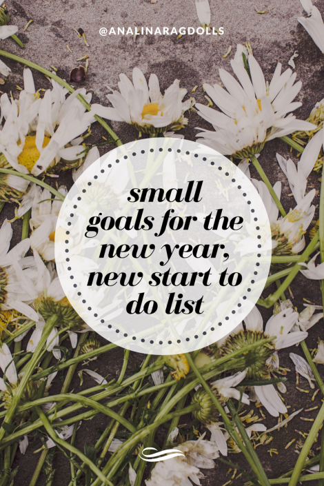 small goals for the new year, new start to do list